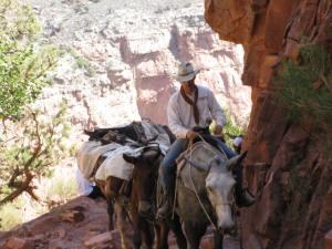 muleta po canyona