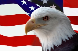 bigstockphoto_american_bald_eagle_on_flag_754506